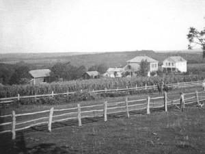 Early Daleyville Houses