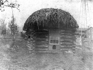 Thatched Hut Ranum Farm